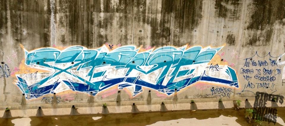 SasterFlix1