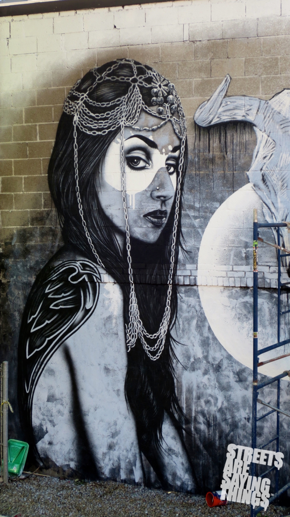 FinDac_Angelina7